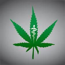 medyczna-marihuana-0290