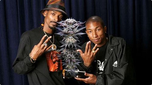 Snoop Dogg i Pharell Łączą Siły w Reklamie Marihuany!, kanabis.info