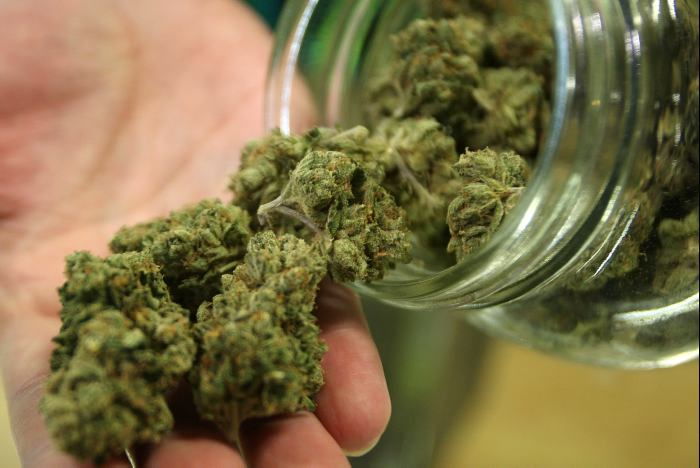 marihuana-0782