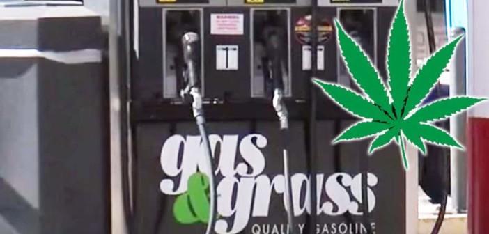 Gas & Grass: Sprzedaż Marihuany na Stacjach Benzynowych Będzie Kolejnym Przebojem?, kanabis.info