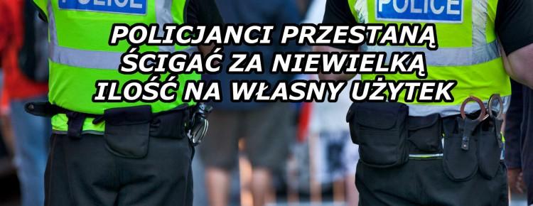 Koniec Bezsensownego Ścigania Okazyjnych Palaczy, kanabis.info