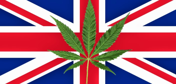 Legalna Marihuana w UK – i Wszyscy są Zadowoleni, kanabis.info