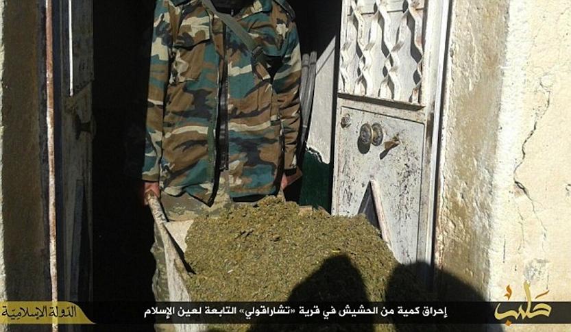 ISIS Spala 50kg Marihuany, Bo Odciąga Ludzi od Woli Allaha, kanabis.info