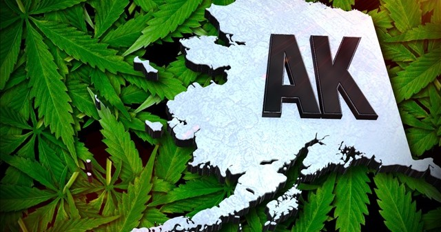 Alaska   Pierwszy Stan, Który Pozwoli na Używanie Marihuany w Miejscach Publicznych, kanabis.info