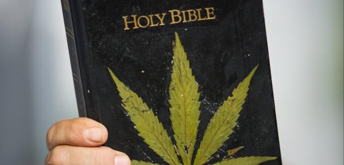 Meksykański Kardynał: Kościół Katolicki Nie Sprzeciwia Się Medycznej Marihuanie, kanabis.info