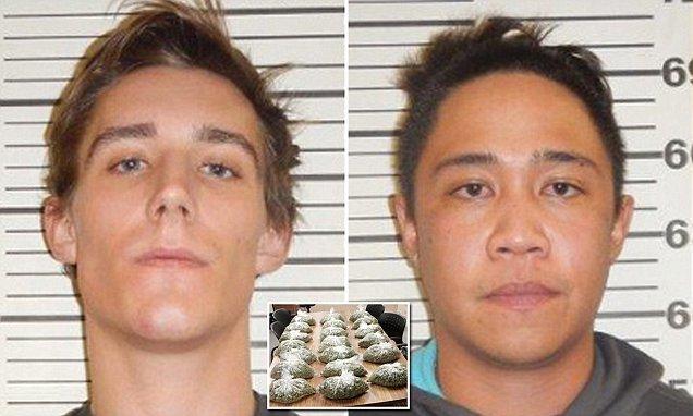 O Tym, Jak Dwóch Paranoicznych Przemytników Marihuany Zadzwoniło Pod 911 Aby się Poddać (wideo), kanabis.info