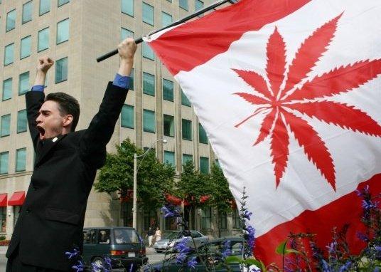 Kanada: Pacjenci Będą Mogli Sami Uprawiać Marihuanę do Celów Medycznych, kanabis.info