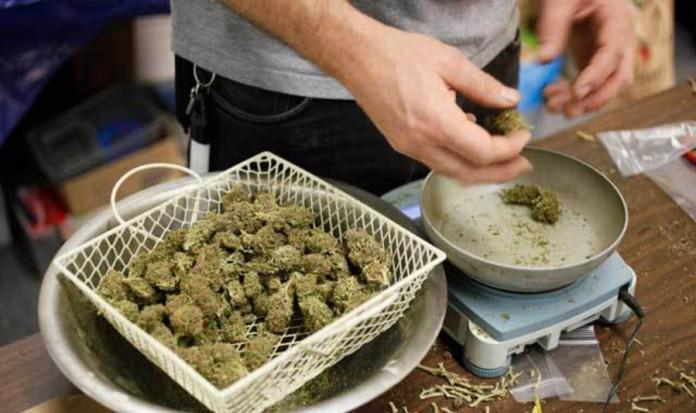 Waszyngton – 45 Milionów Sprzedanych Jointów w Niecałe 7 Miesięcy, kanabis.info