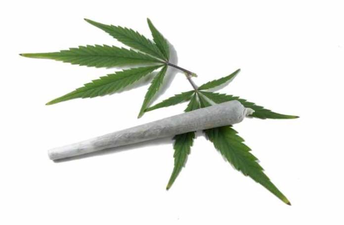 Marihuana Mocniej Uśmierza Ból u Mężczyzn Niż u Kobiet, kanabis.info