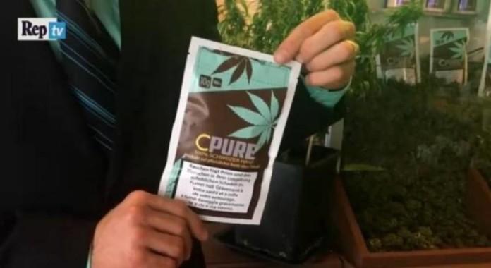 Szwajcaria Legalizuje Marihuanę o Niskiej Zawartości THC, kanabis.info