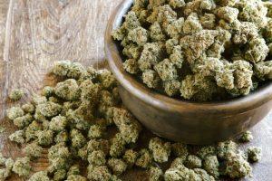 medycznej-marihuanie-6786