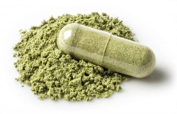 Cannabis Zastępuje Leki na Receptę, kanabis.info