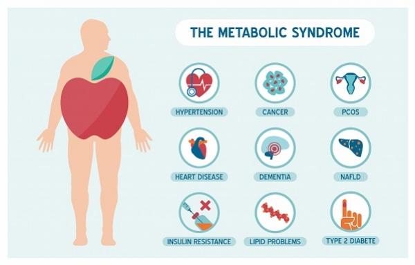 Znalezione obrazy dla zapytania zespół metaboliczny