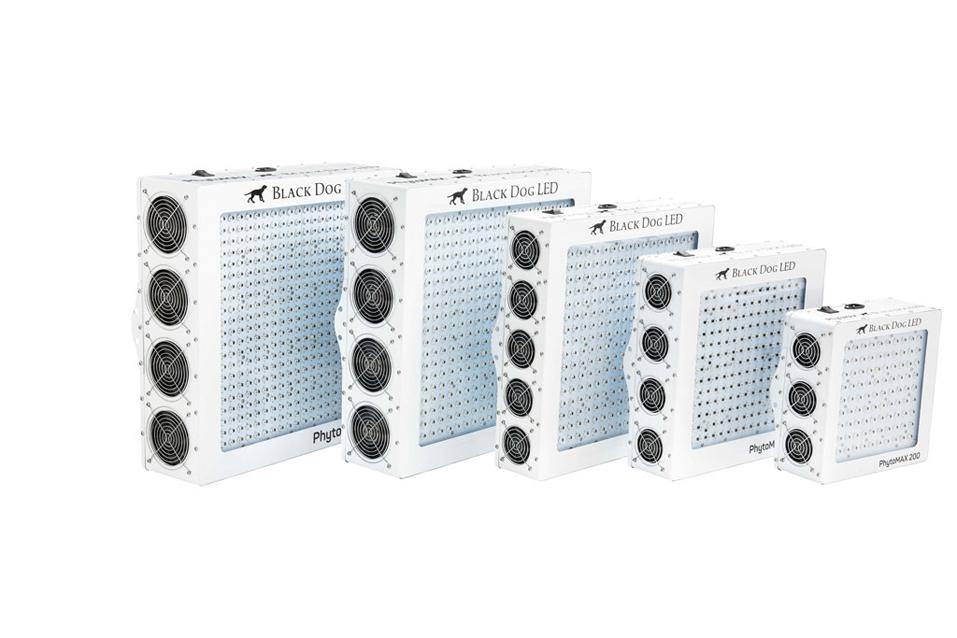 PhytoMAX od firmy Black Dog LED, kanabis.info