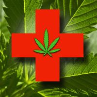 Niemcy: pierwsze dane i fakty po legalizacji medycznej marihuany, kanabis.info