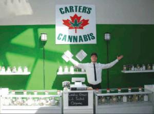 Zamiast narodowych sklepów konopnych..., kanabis.info