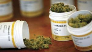 Niemcy: zwiększa się liczba przepisywanych recept na cannabis, kanabis.info