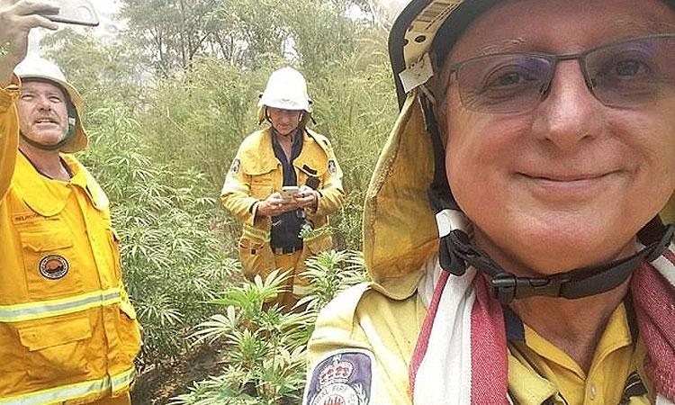 Pożary Lasów w Australii: Strażacy Znajdują Pole Marihuany   i Robią Sobie Selfie, kanabis.info