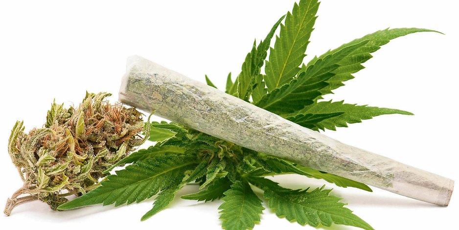 Już w Tym Roku Polacy Będą Palić Marihuanę Zupełnie Legalnie, kanabis.info