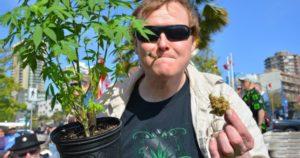 Kanada: anulowanie 500.000 kar za posiadanie marihuany, kanabis.info