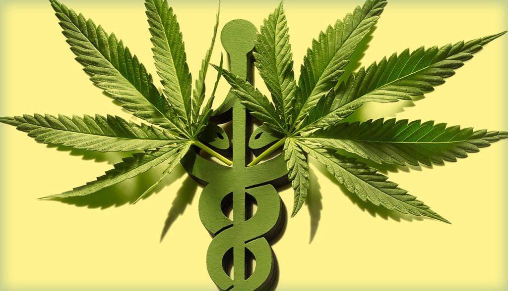 Legalne Narkotyki w Europie, kanabis.info