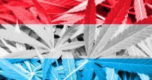 Luksemburg legalizuje medyczną, kanabis.info