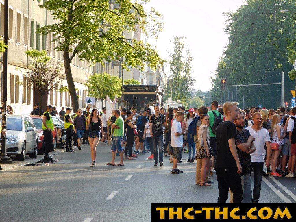 marsz, wyzwolenia, konopi, 2012, Warszawa