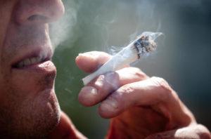 Tyle tracą Niemcy na zakazie marihuany, kanabis.info