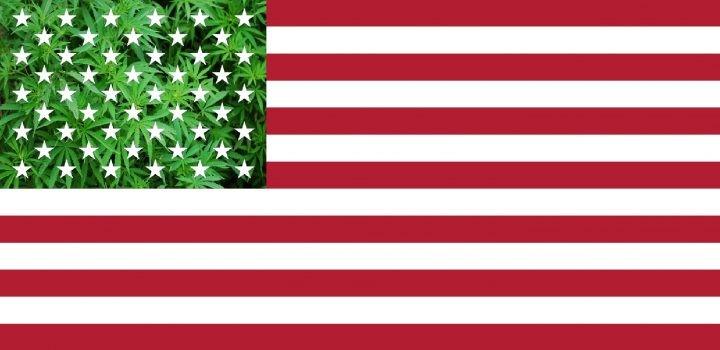 Virginia Legalizuje Marihuanę (dopiero) w 2024 roku, kanabis.info